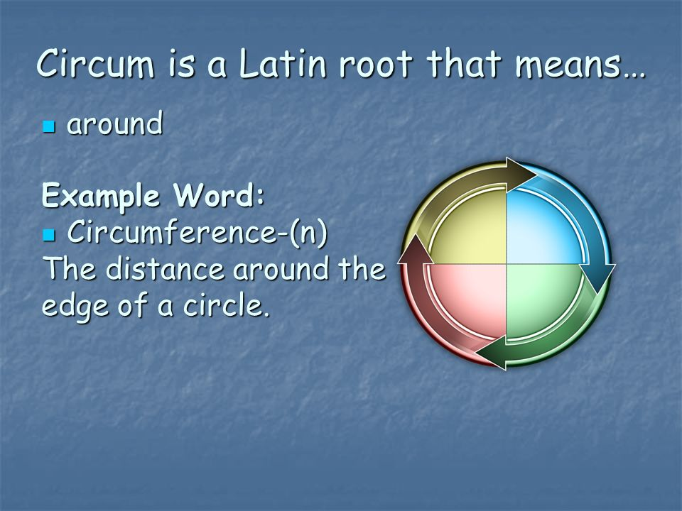 Circum is a Latin root that means…