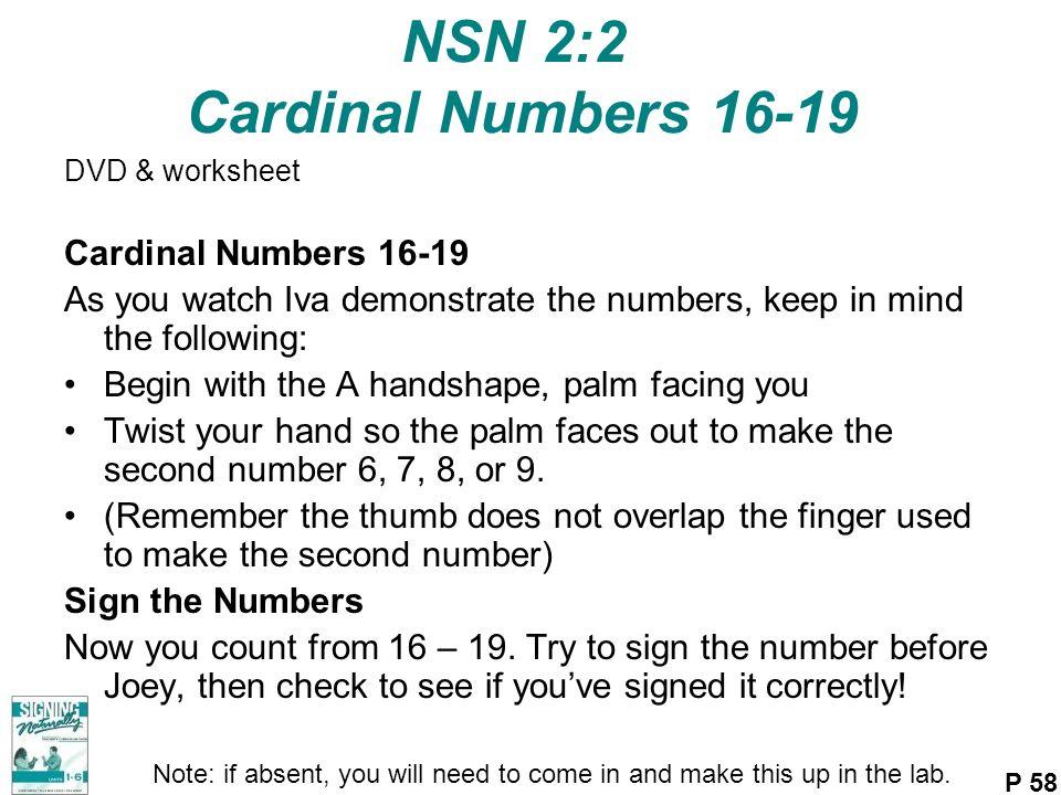NSN 2:2 Cardinal Numbers 16-19