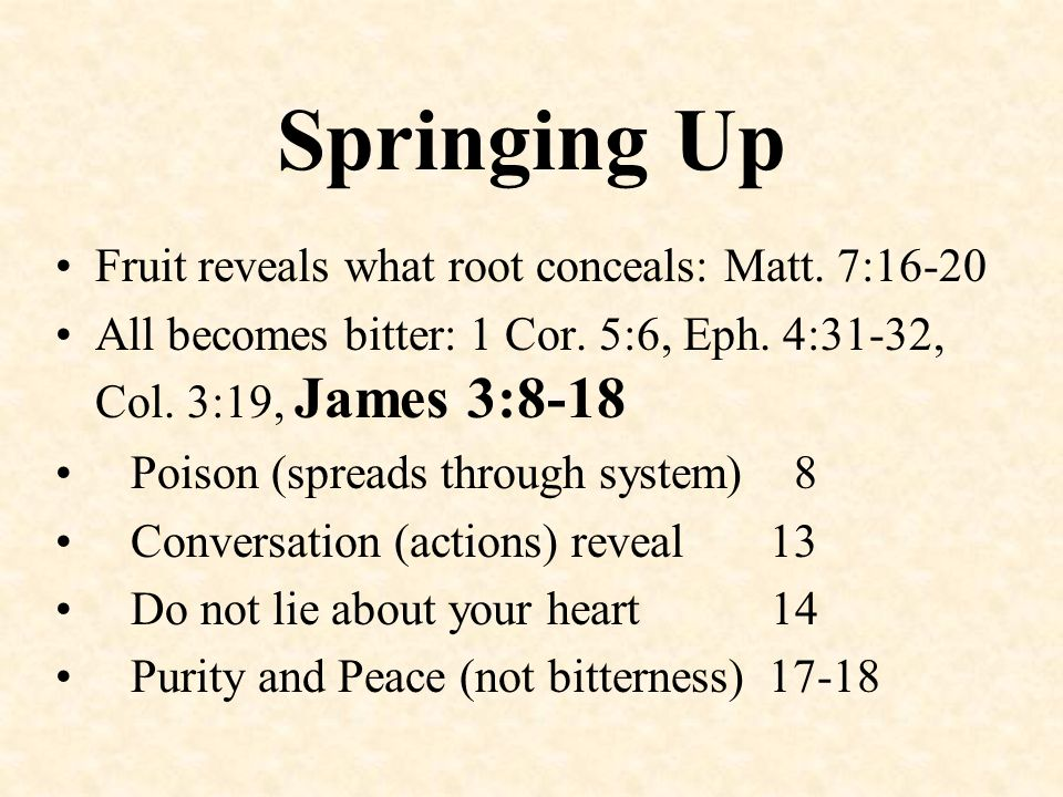 Springing Up Fruit reveals what root conceals: Matt. 7:16-20