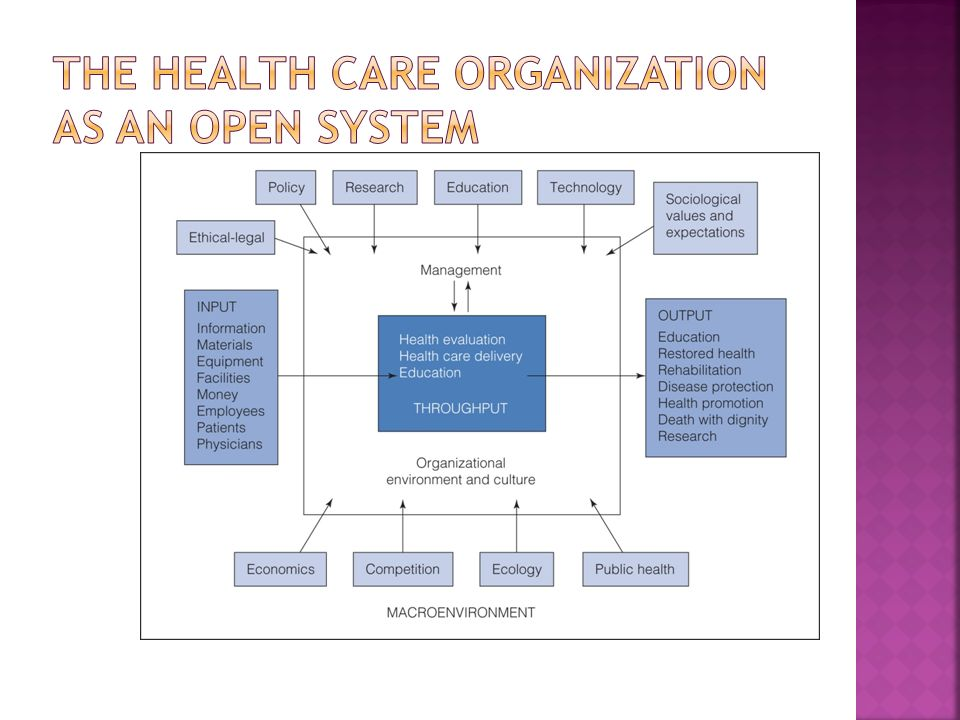 The Health Care Organization as an Open System