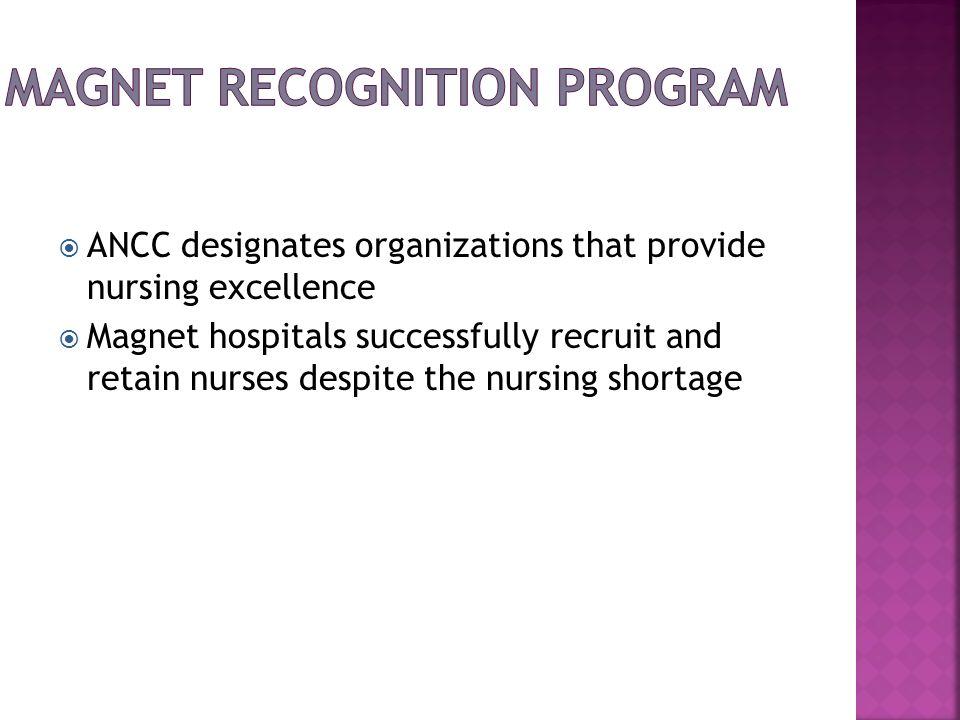 Magnet Recognition Program