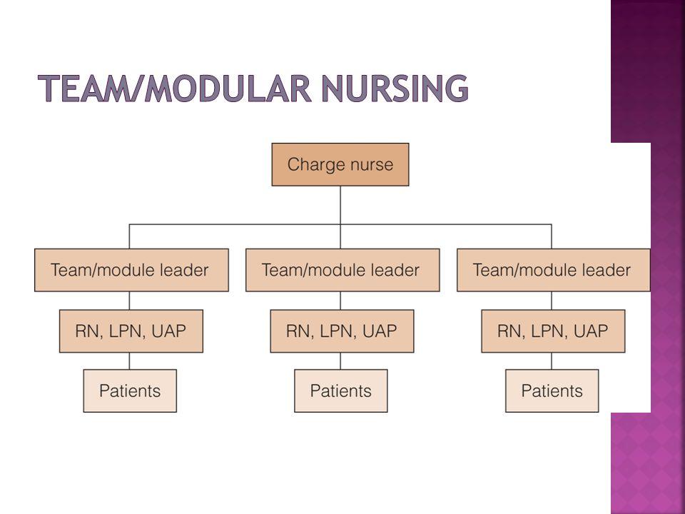 Team/Modular Nursing