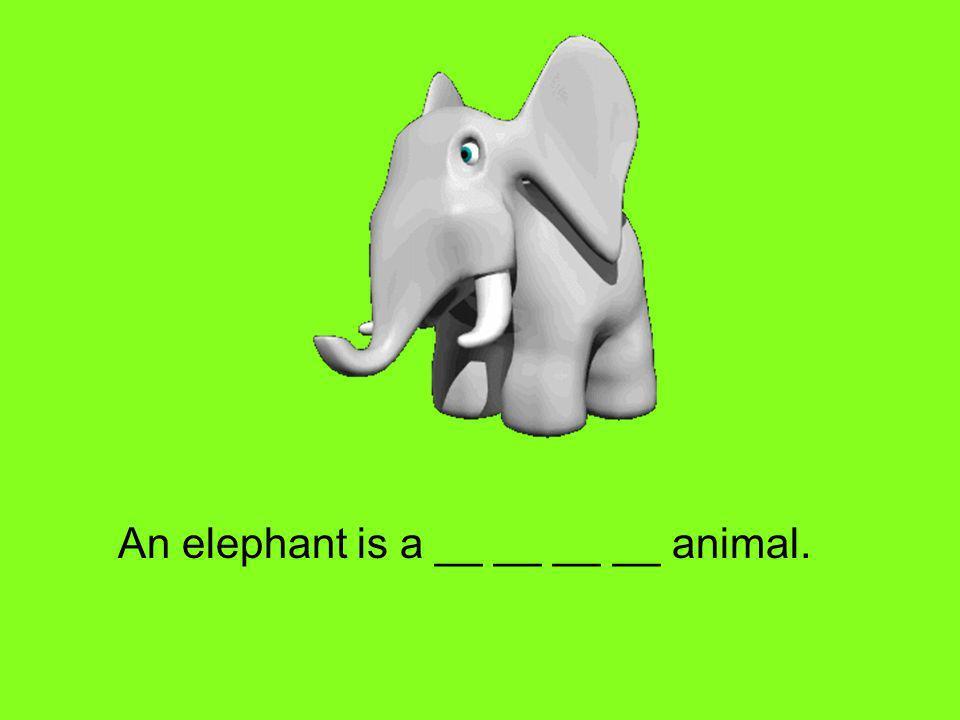An elephant is a __ __ __ __ animal.