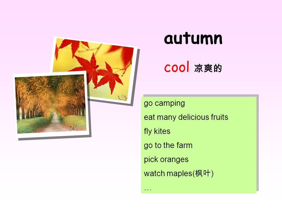 autumn cool 凉爽的 go camping eat many delicious fruits fly kites