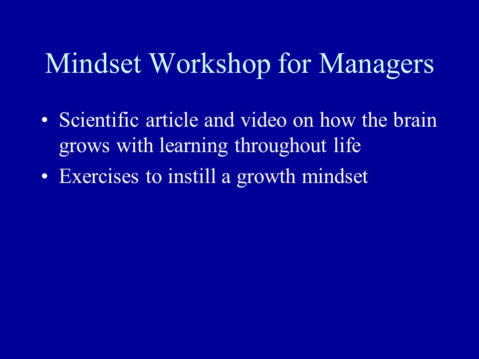 Mindset Workshop for Managers