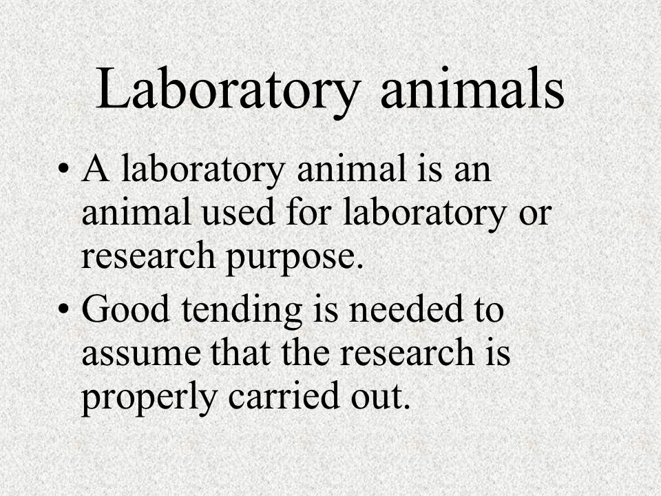 Laboratory animals A laboratory animal is an animal used for laboratory or research purpose.
