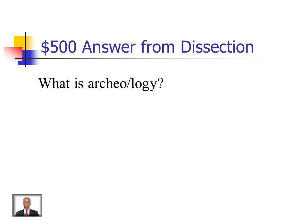 $500 Answer from Dissection