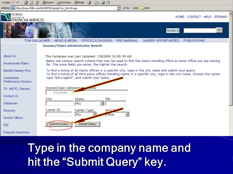Type in the company name and hit the Submit Query key.