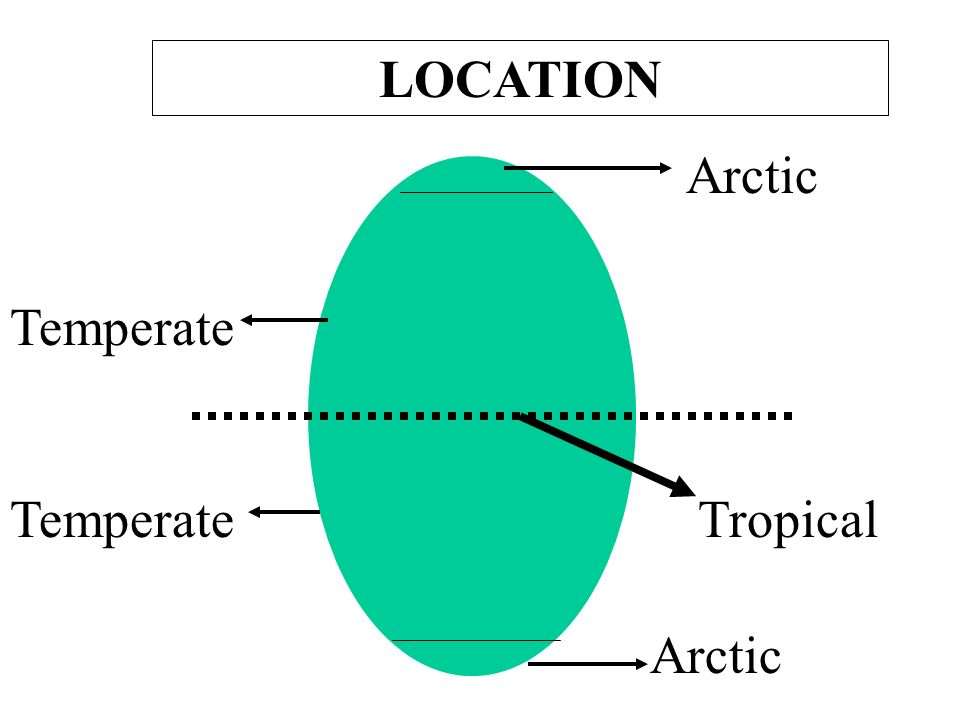 LOCATION Arctic Temperate Temperate Tropical Arctic