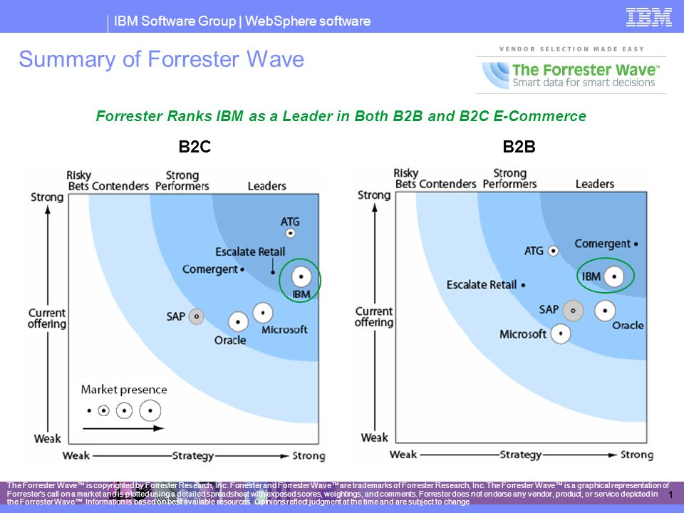 Summary of Forrester Wave