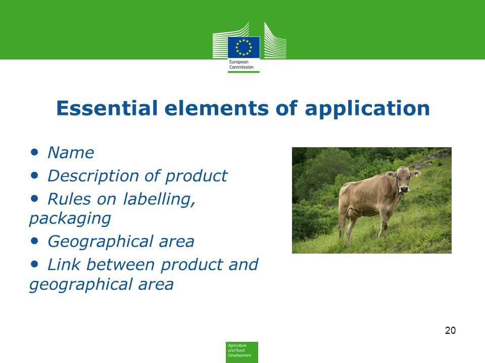Essential elements of application