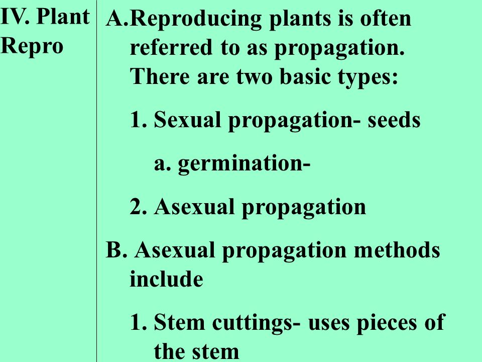 IV. Plant Repro. Reproducing plants is often referred to as propagation. There are two basic types: