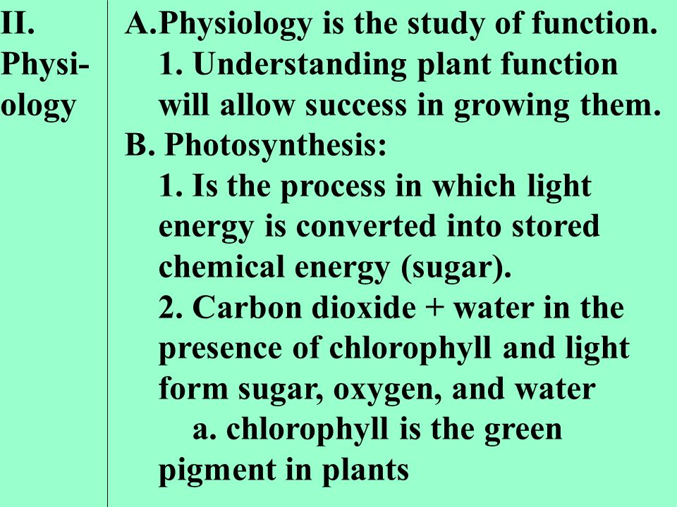 II. Physi-ology Physiology is the study of function. 1. Understanding plant function will allow success in growing them.