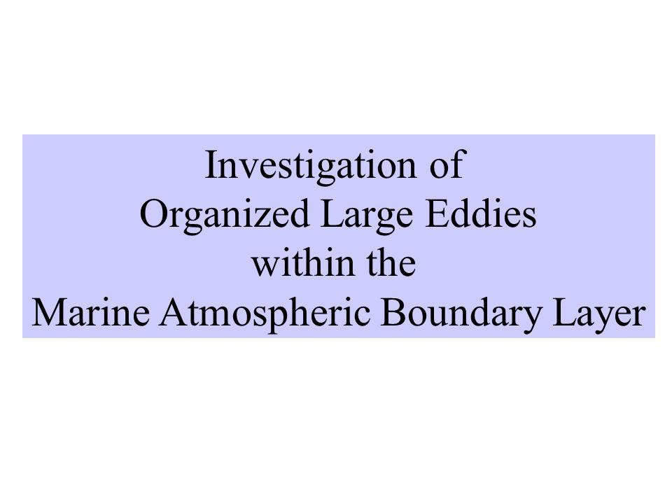 Organized Large Eddies within the Marine Atmospheric Boundary Layer