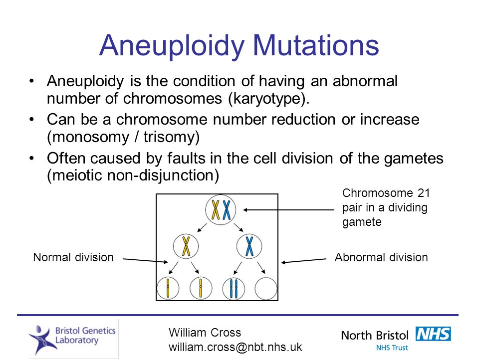 Aneuploidy Mutations Aneuploidy is the condition of having an abnormal number of chromosomes (karyotype).