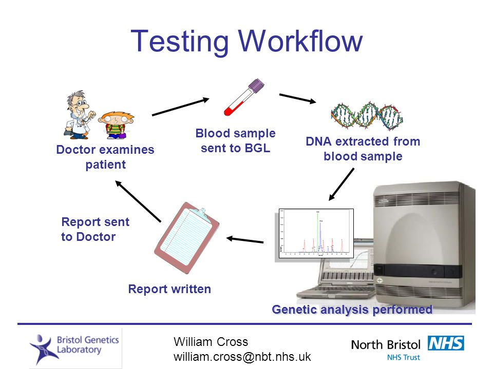 Testing Workflow Blood sample sent to BGL