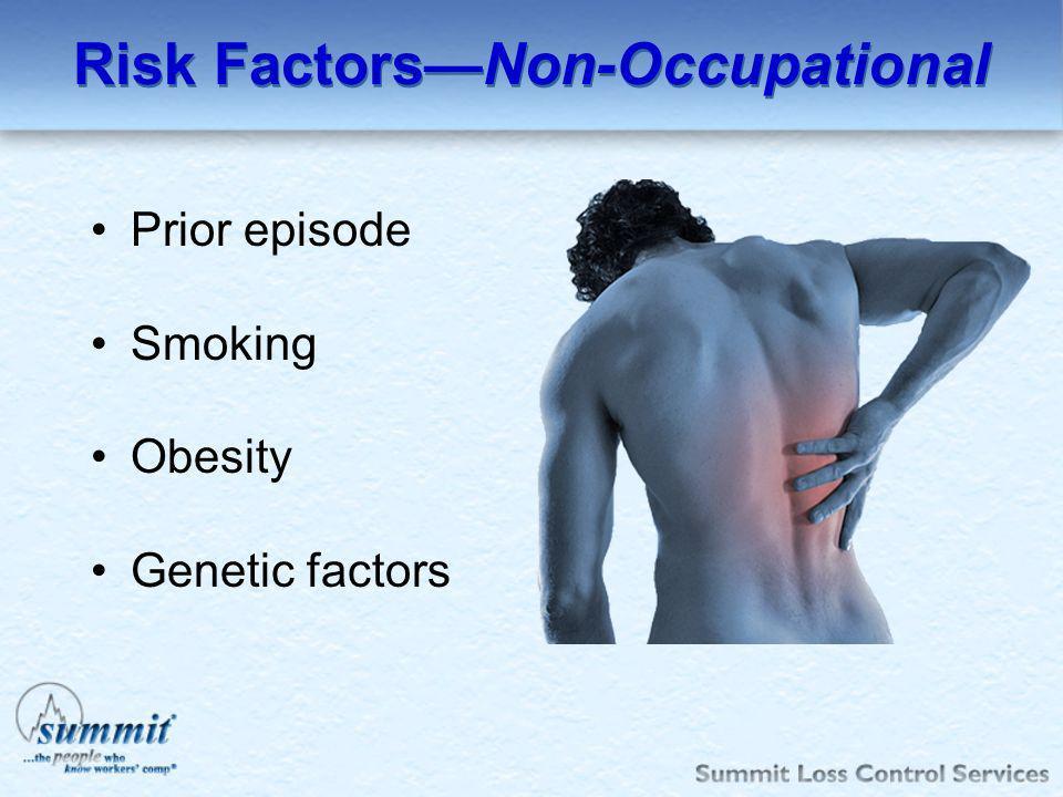 Risk Factors—Non-Occupational
