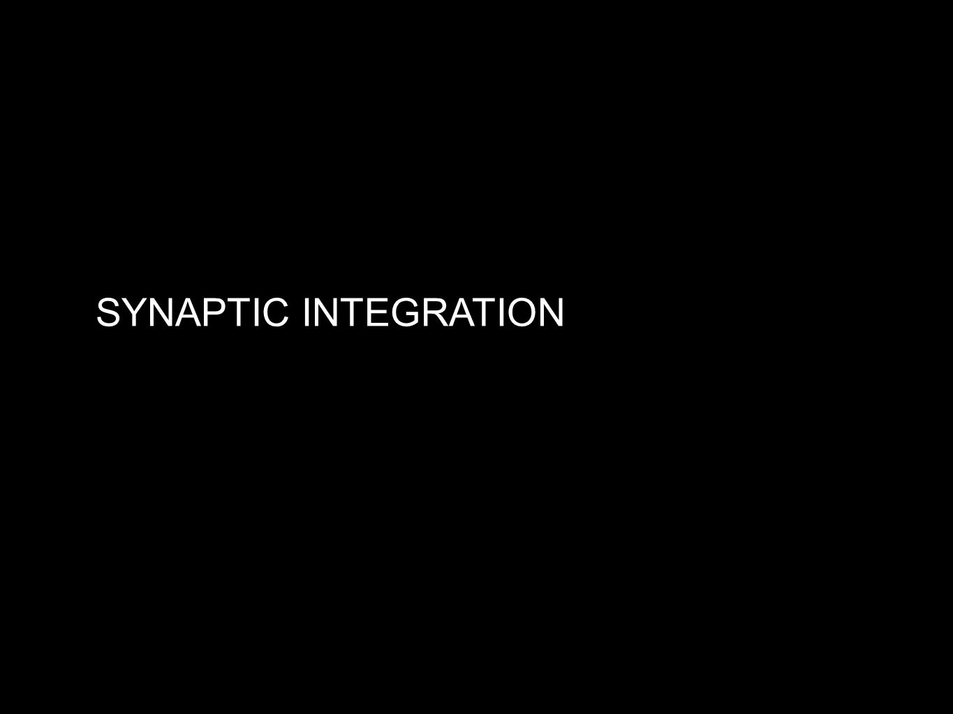 SYNAPTIC INTEGRATION