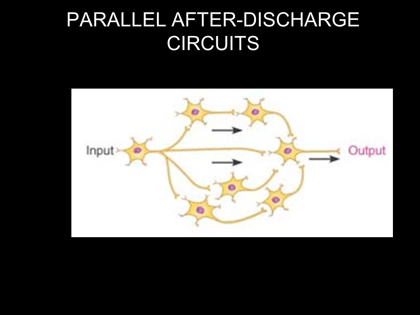 PARALLEL AFTER-DISCHARGE CIRCUITS