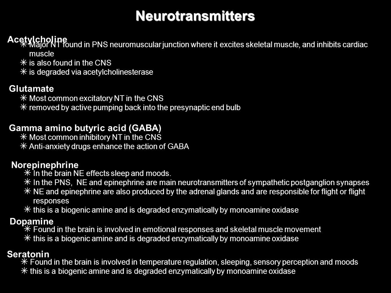 Neurotransmitters Acetylcholine Glutamate