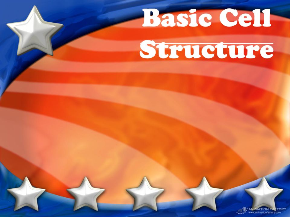 Basic Cell Structure