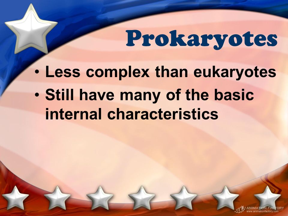 Prokaryotes Less complex than eukaryotes