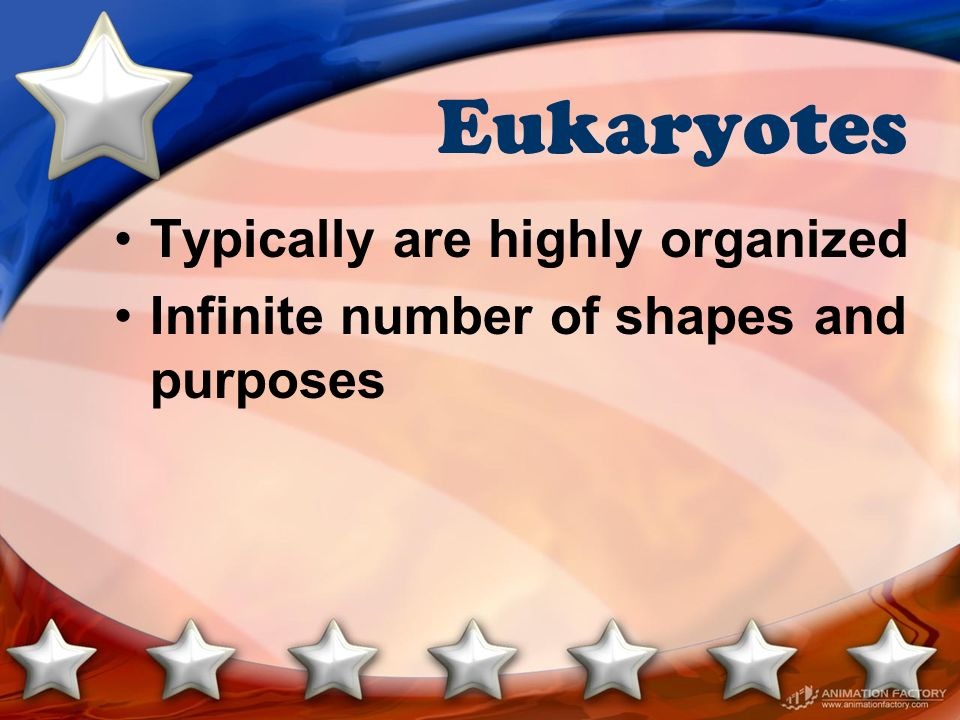 Eukaryotes Typically are highly organized