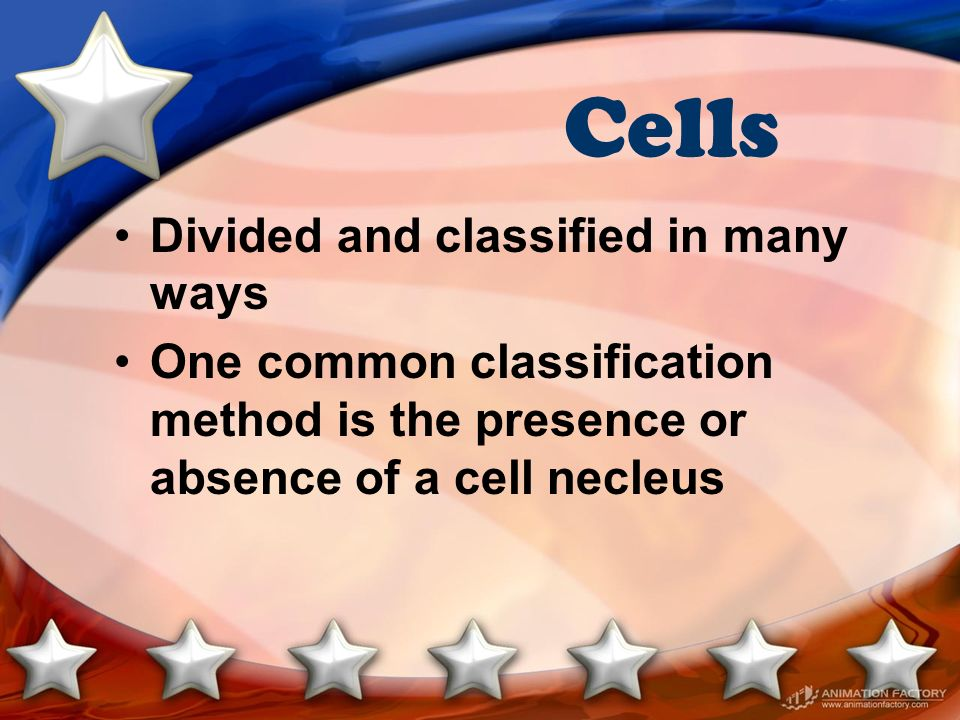 Cells Divided and classified in many ways