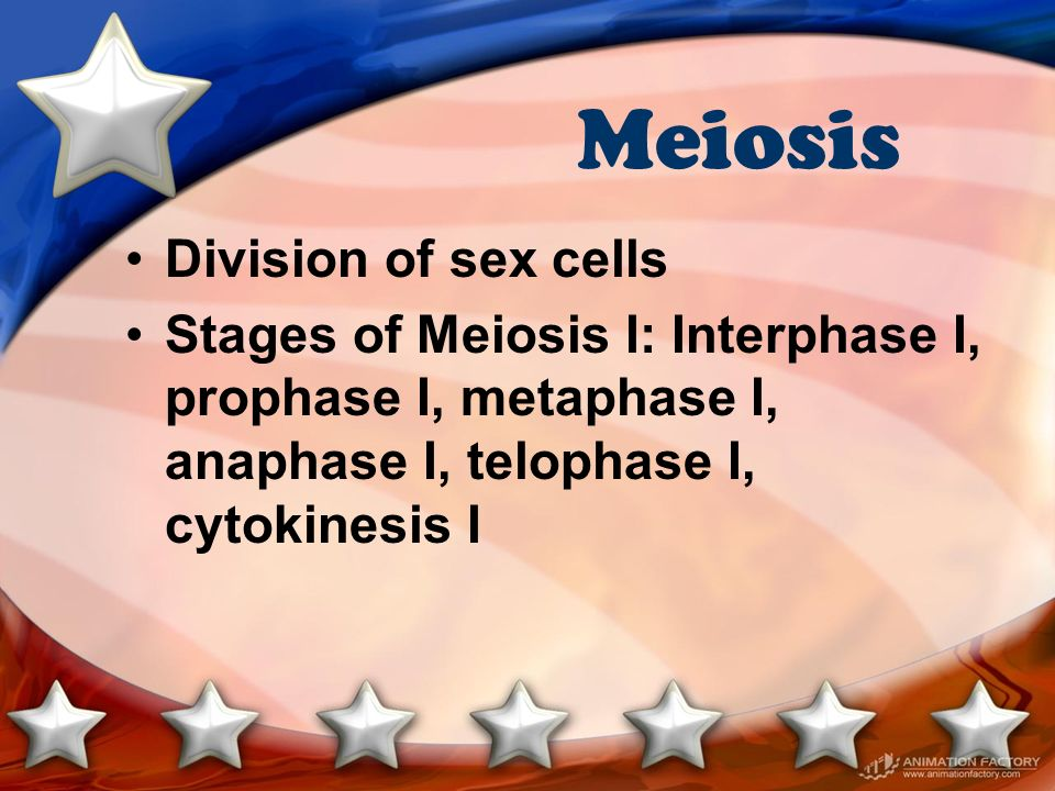 Meiosis Division of sex cells