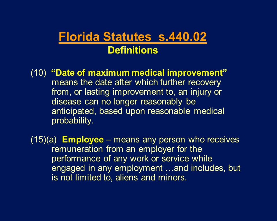 Florida Statutes s Definitions