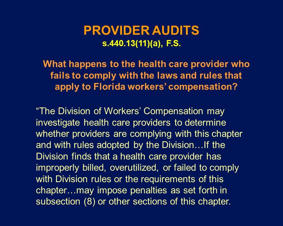 PROVIDER AUDITS s.440.13(11)(a), F.S.