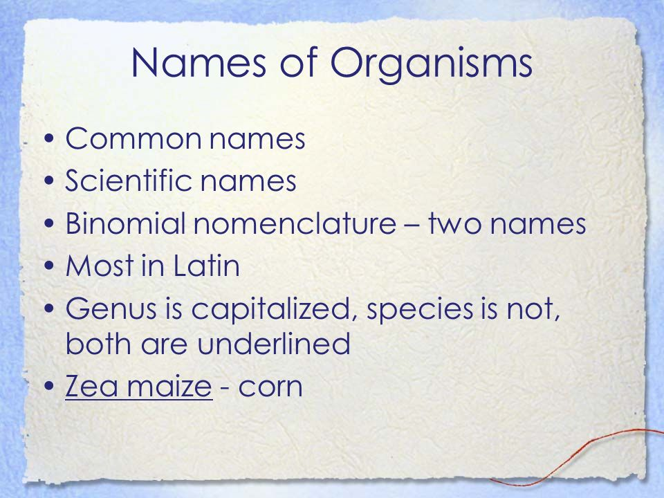 Names of Organisms Common names Scientific names