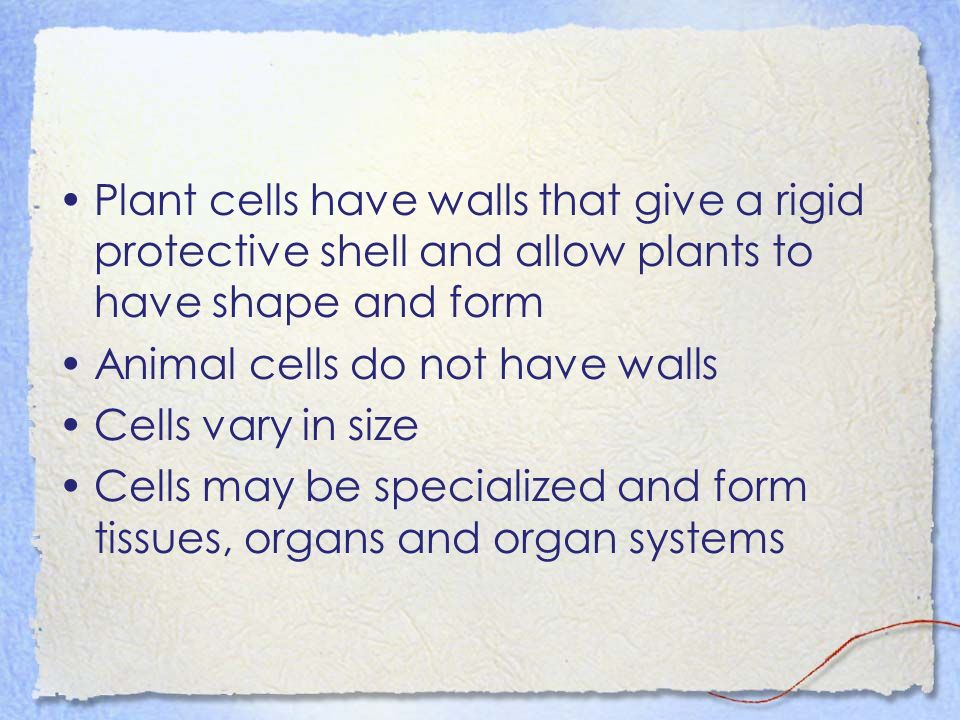 Plant cells have walls that give a rigid protective shell and allow plants to have shape and form