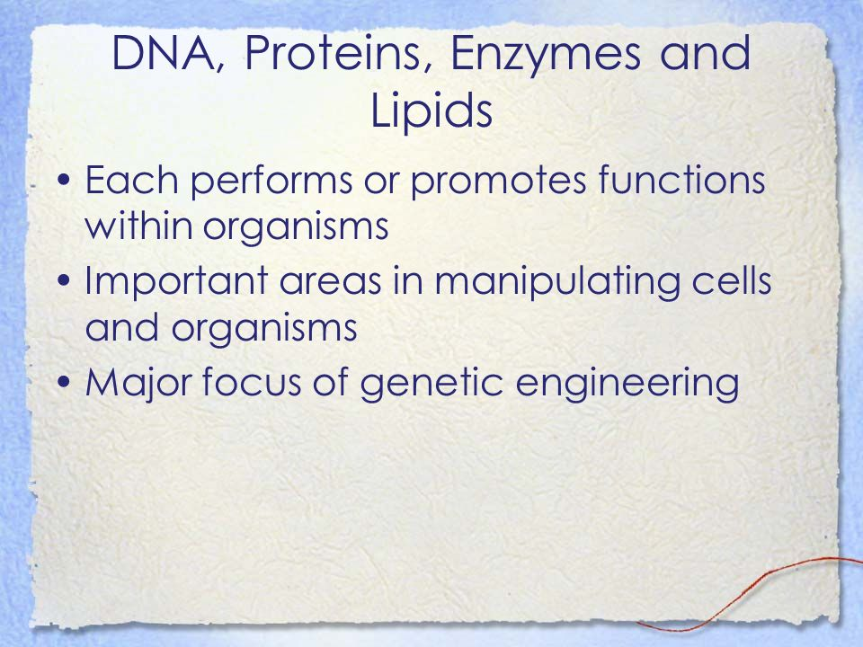 DNA, Proteins, Enzymes and Lipids