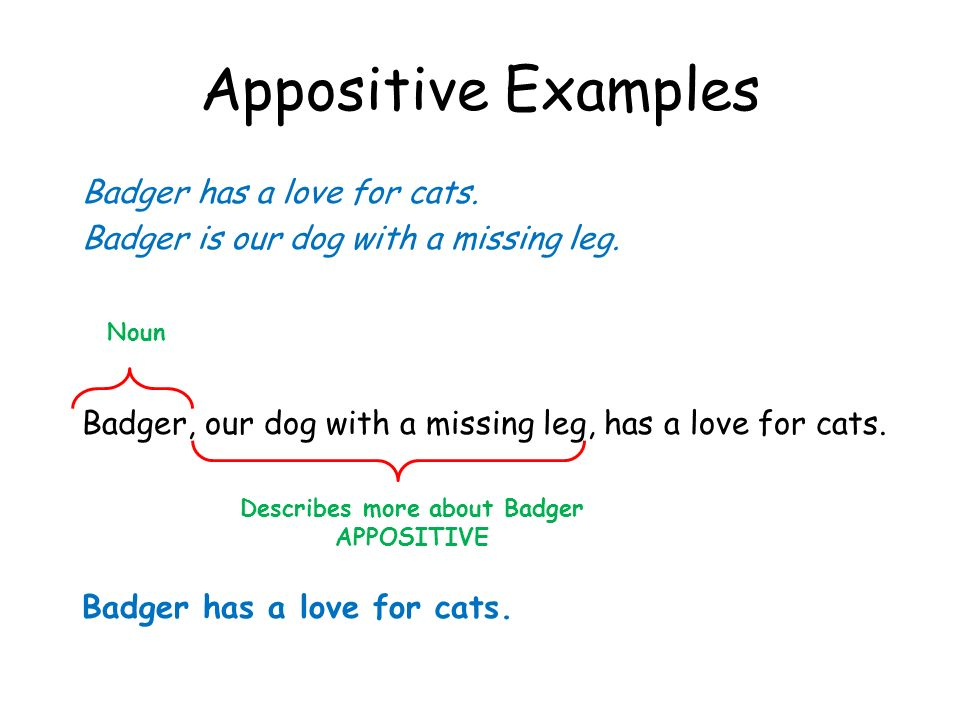 Describes more about Badger