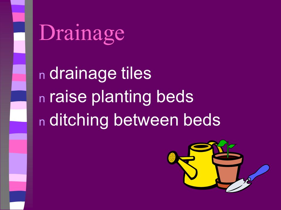 Drainage drainage tiles raise planting beds ditching between beds