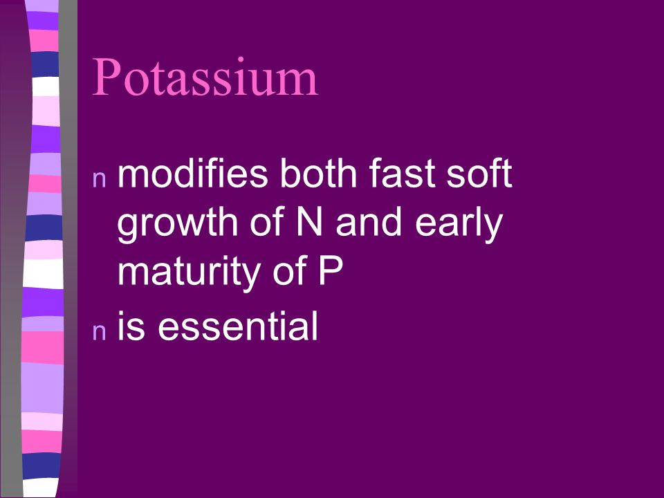Potassium modifies both fast soft growth of N and early maturity of P
