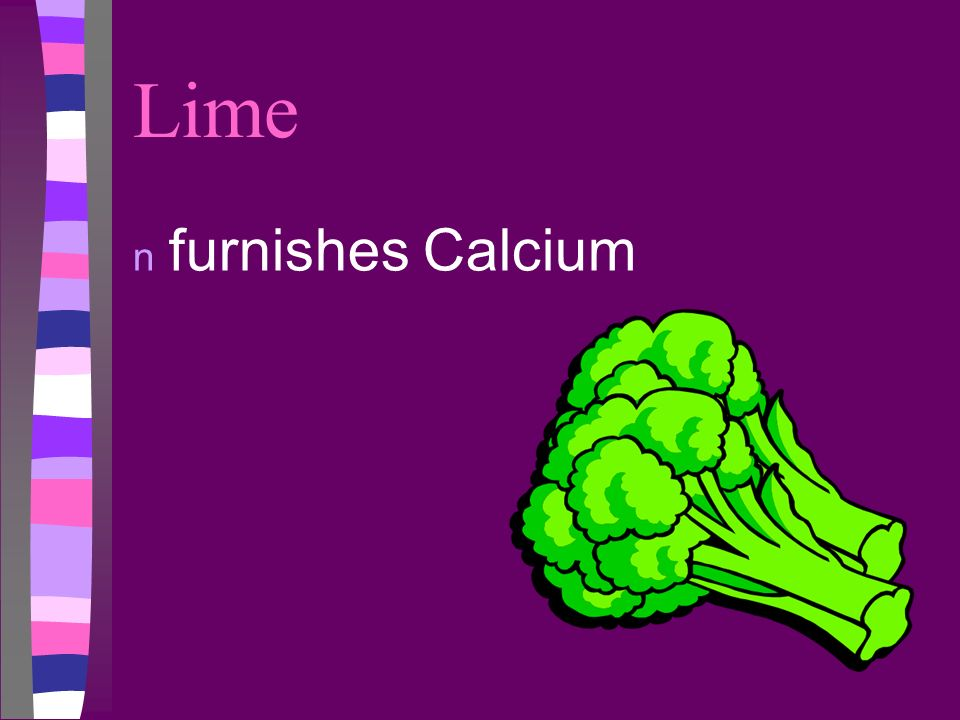 Lime furnishes Calcium