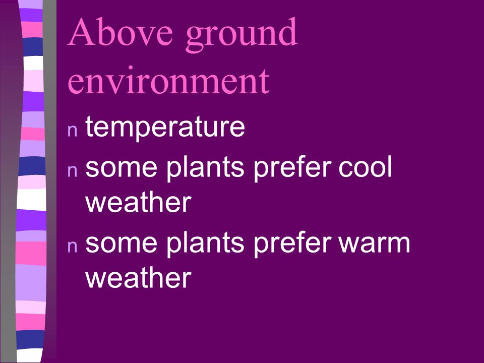 Above ground environment