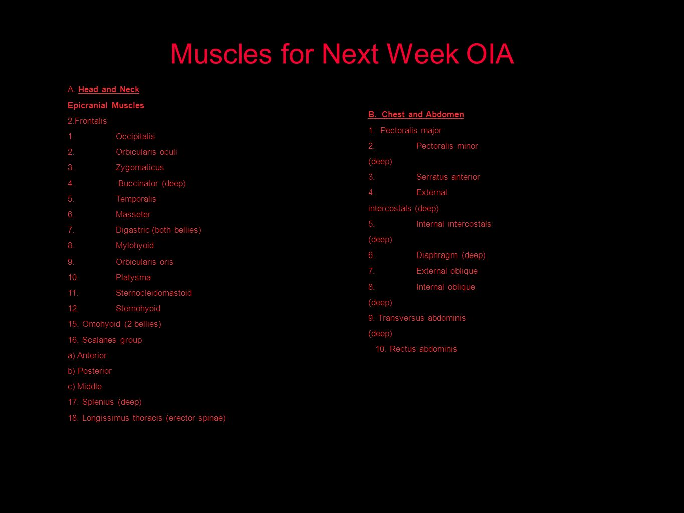 Muscles for Next Week OIA