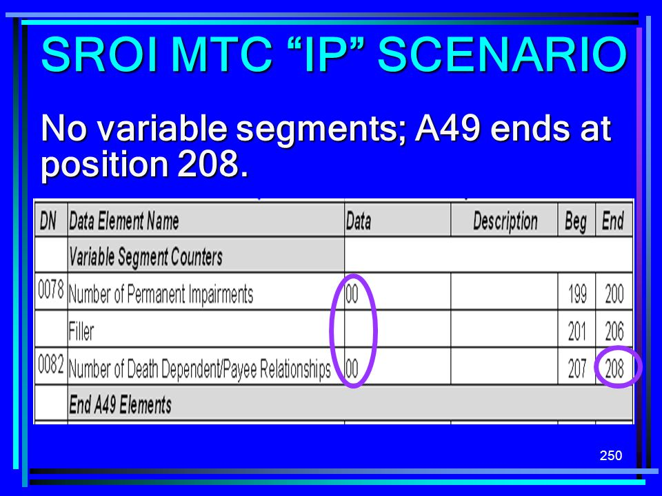 SROI MTC IP SCENARIO No variable segments; A49 ends at position 208.