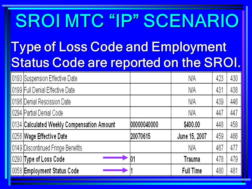 SROI MTC IP SCENARIO Type of Loss Code and Employment Status Code are reported on the SROI.