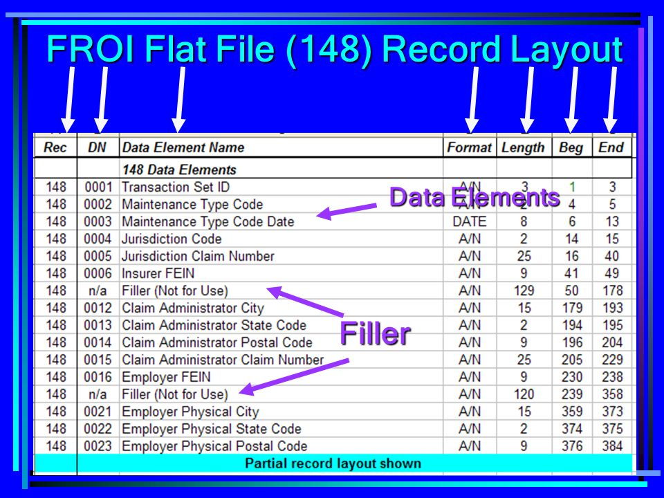 FROI Flat File (148) Record Layout