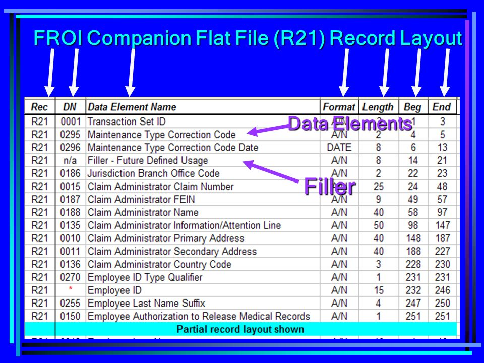 FROI Companion Flat File (R21) Record Layout