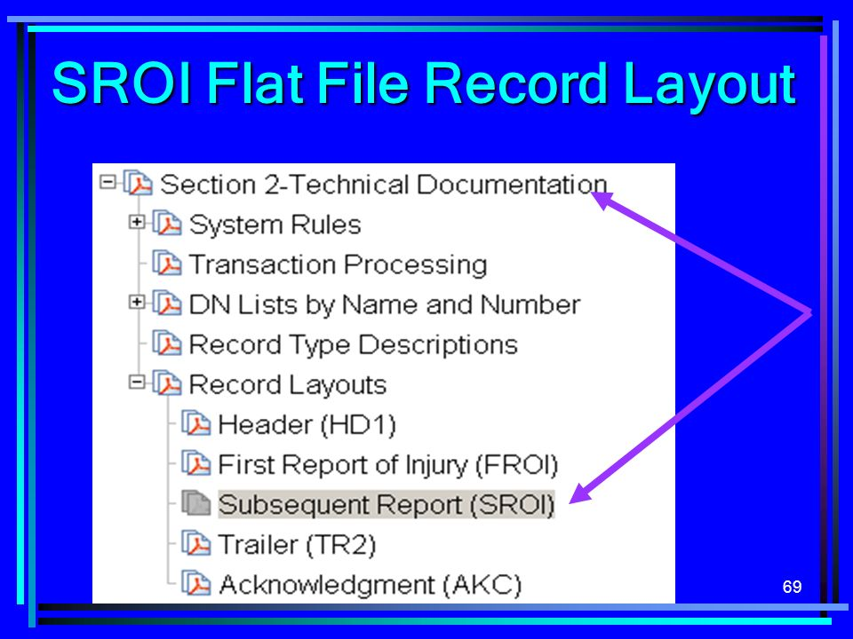 SROI Flat File Record Layout