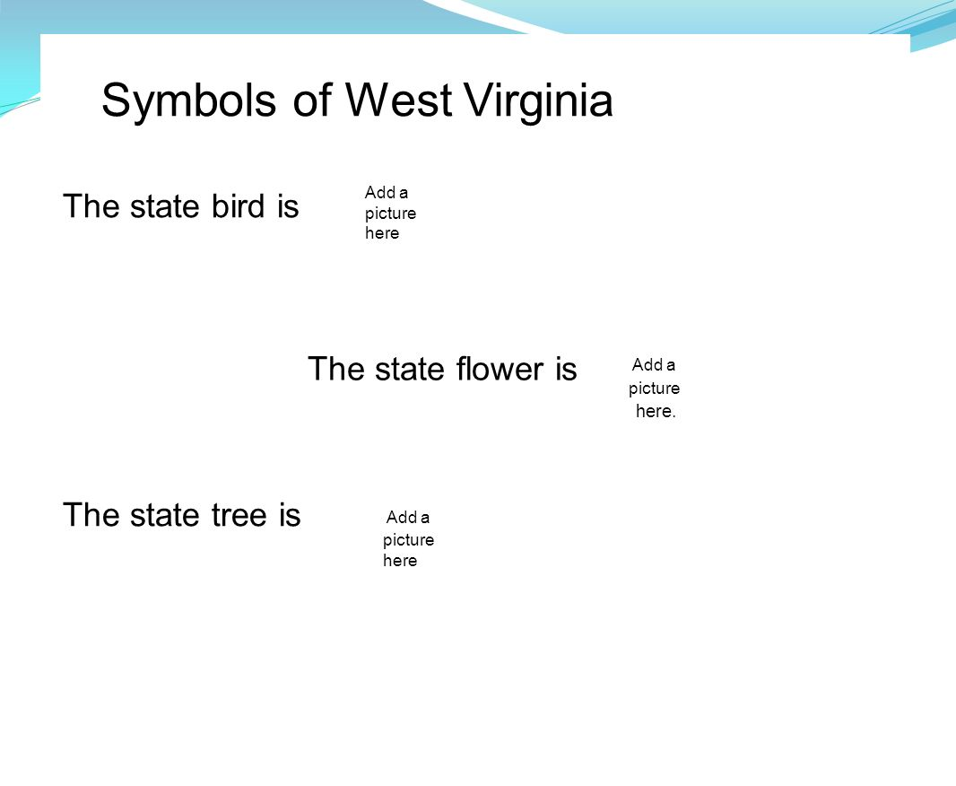 Flag of West Virginia State Symbols USA