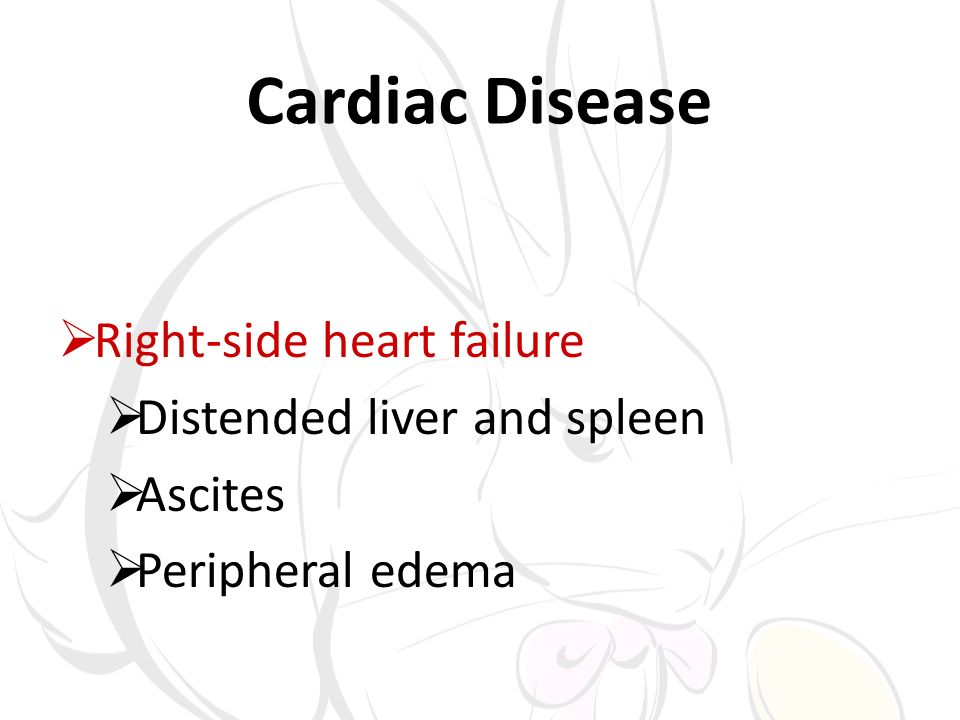 Cardiac Disease Right-side heart failure Distended liver and spleen