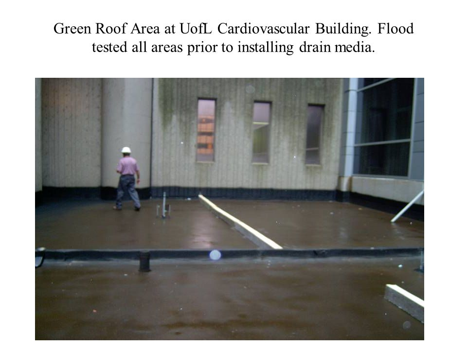Green Roof Area at UofL Cardiovascular Building