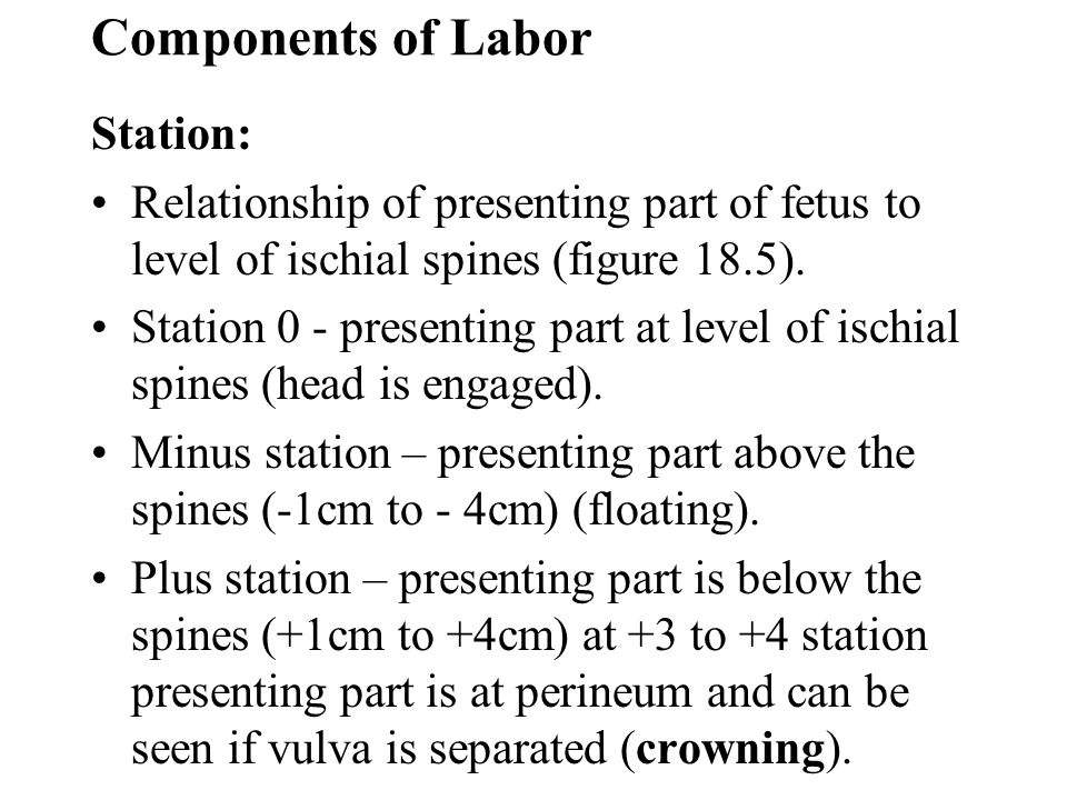 Components of Labor Station:
