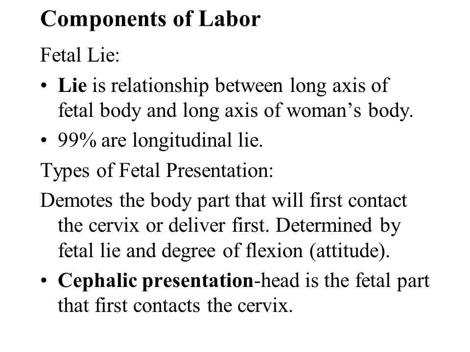 Components of Labor Fetal Lie: